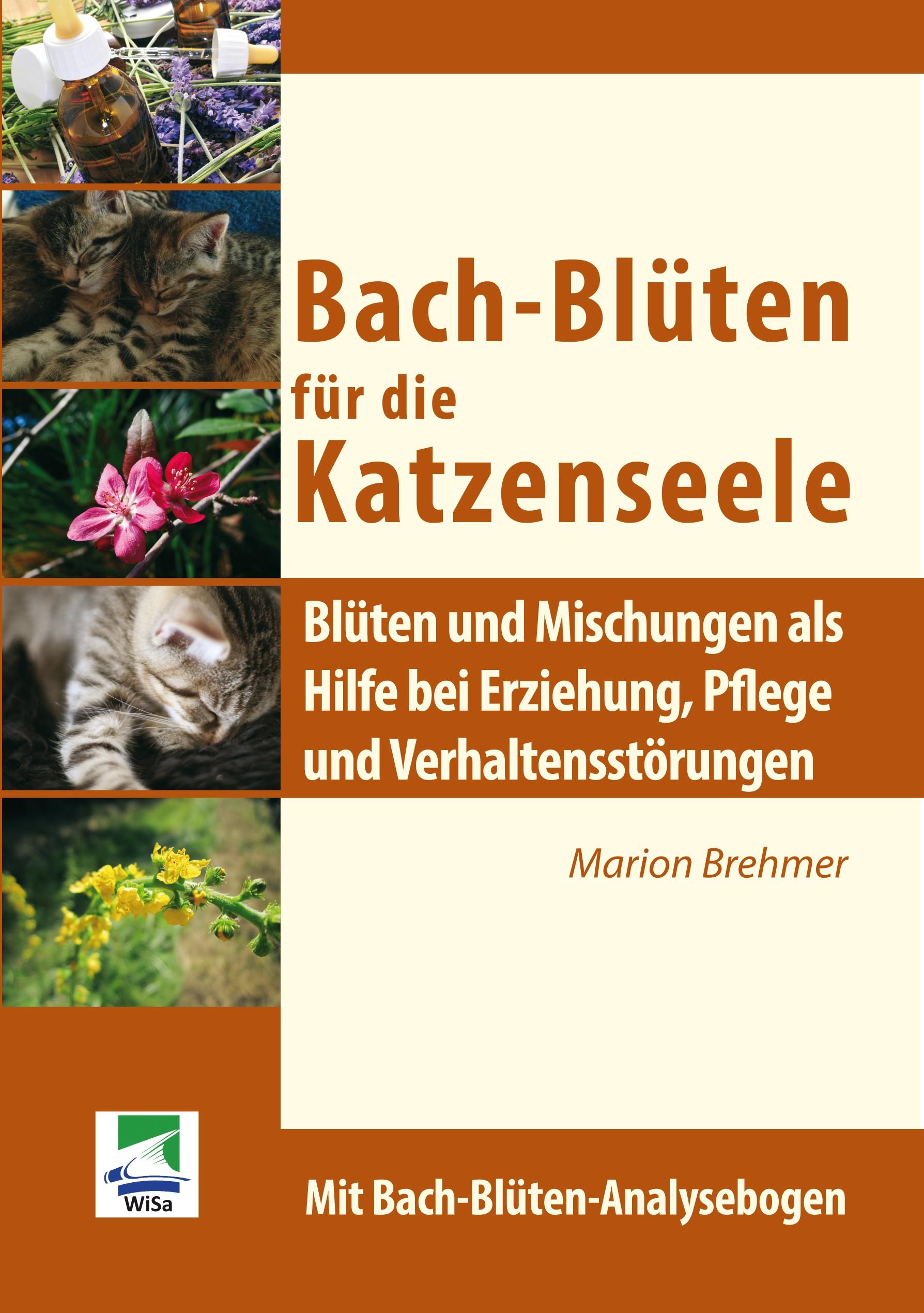 Bach-Blüten für die Katzenseele